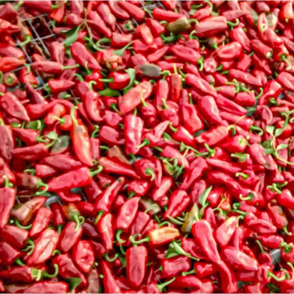 Peperoncini salsa