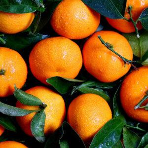 Mandarini-Clementine