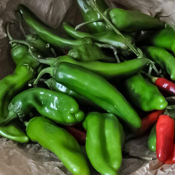 Salsa-di-peperoncino-verde